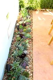 How To Design A Patio by Guest Post Designing A Succulent And Herb Garden On The Patio