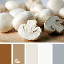 20 best classroom images on pinterest color palettes colors and