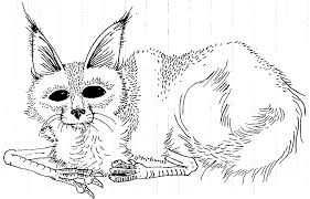 extraordinary coloring pages wild wild