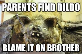 Rodent Meme - parents find dildo blame it on brother bad logic rodent quickmeme