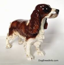collectable vintage springer spaniel dogs