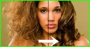 sollutions to dry limp hair is olive oil an effective solution for dry hair