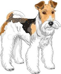 vector sketch dog stock vector colourbox