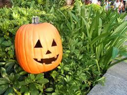 file hk ocean park halloween pumpkin sep 2013 jpg wikimedia commons