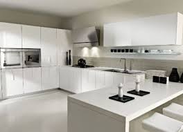 High Gloss Kitchen Cabinets by Kitchens With White Cabinets 2013 Home Design And Decor Ideas