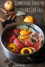 Simmer Pot Recipes Simmering Stovetop Potpourri For Fall House Smells Potpourri