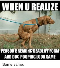 Dog Poop Meme - when urealile anky pro ogress tv person breaking deadliftform and