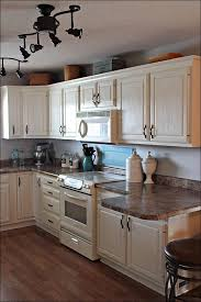 Kitchen Cabinet Upgrade by Kitchen White Kitchen Cupboards How To Paint Kitchen Cabinets