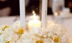 Economical Wedding Centerpieces by Economical Wedding Centerpieces Wedding Centerpieces Designs And