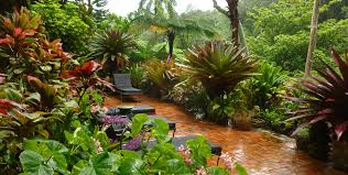 Tropical Gardening Ideas Tropical Gardens Of Hawaii With Graham Ross Ross Garden Tours