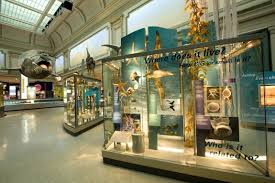 insider visitor tips for the weekend at the smithsonian