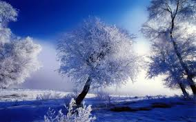 winter play of colors white and blue hd wallpaper