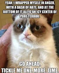 Tard The Cat Meme - top 25 grumpy cat memes cattime