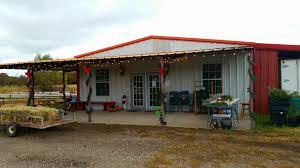 4d christmas tree farm weatherford having fun in the texas sun