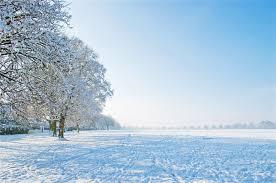 winter day free photo on pixabay