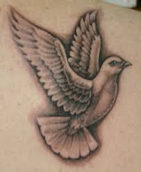 dove tattoos on ideas pictures ideas pictures
