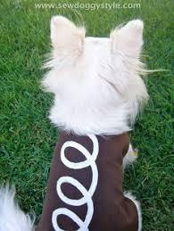 Disney Halloween Costumes Dogs Ghost Dog Halloween Costumes 20 Funny Homemade Dog Costumes