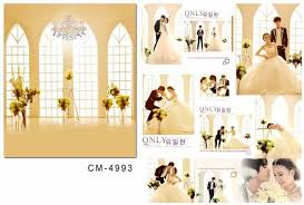 backdrop wedding korea bunch korea style photography digital backdrop cloth backgrounds