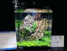 nano aquascape nano aquascape this tank even be called an it was a planted