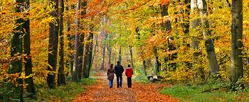 best places for a fall getaway near los angeles cbs los angeles