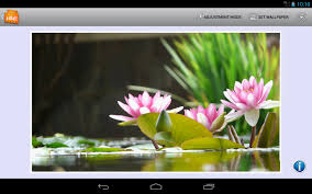 vibrant wallpaper own photos 2 wallpaper changer android apps on google play
