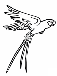 cartoon birds flying coloring page free download