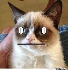 Grumpy Face Meme - grumpy meme face alaskainpictures