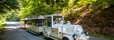 Caracalla Baden Baden Stadtbahn