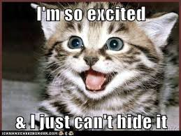 Im So Excited Meme - i m so excited and i just can t hide it so sew easy