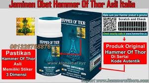 jaminan obat hammer of thor asli italia hammer of thor pinterest