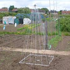 plant support frames plant supports u0026 ties for your greenhouse