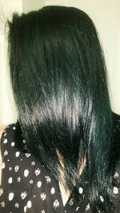 Black Hair Color Chart Best 25 Dark Green Hair Ideas On Pinterest Emerald Hair Dark