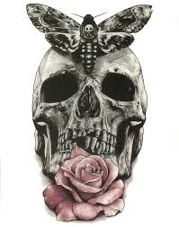 butterfly skull images inspiration butterfly