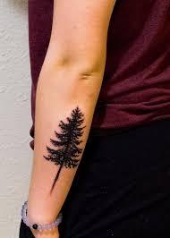 spruce tree spruce tree forearm tattoos book 65000