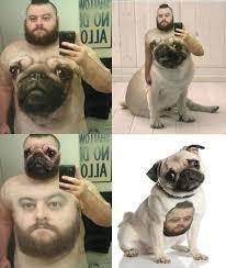 Mirror Meme - mirror photos will make a meme out of you