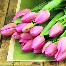 Tulip Bouquets I Heart Tulips Bright