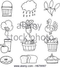 draw collection thanksgiving doodles stock vector