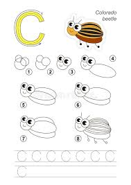 tutorial vector c drawing tutorial game for letter c colorado potato beetle stock