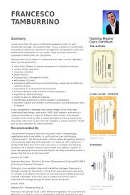 Test Manager Resume Template Commercial Manager Resume Samples Visualcv Resume Samples Database