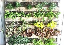 Patio Herb Garden Ideas Patio Herb Garden Ideas New Stunning Patio Herb Garden Ideas 24