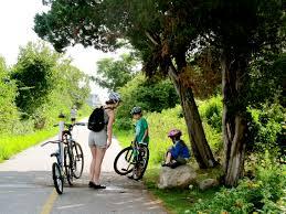 shining sea bikeway woods hole blog
