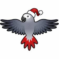 african grey parrot christmas gifts on zazzle