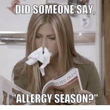 Allergy Meme - 25 best memes about allergy season allergy season memes