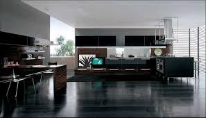 Luxury Modern Kitchen Designs Elegant And Peaceful Modern Kitchen Design Pictures Modern Kitchen
