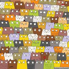 where is the panda find the panda among these