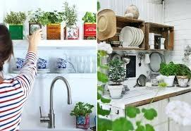 plante cuisine decoration decoration cuisine plantes aromatiques dacco deco herbes 89 rennes