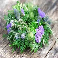 diy miniature wreaths gardening earth living