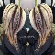 blonde hair with chunky highlights blonde hair with chunky brown highlights brown hairs