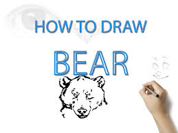 how to draw a bear step by step pencil art drawing