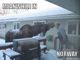 Norway Meme - meanwhile in funny meme pictures meanwhile in
